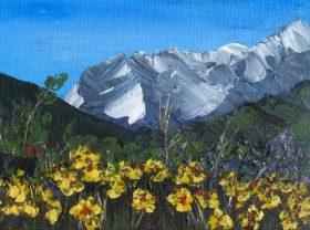 Bông hoa trên vách núi