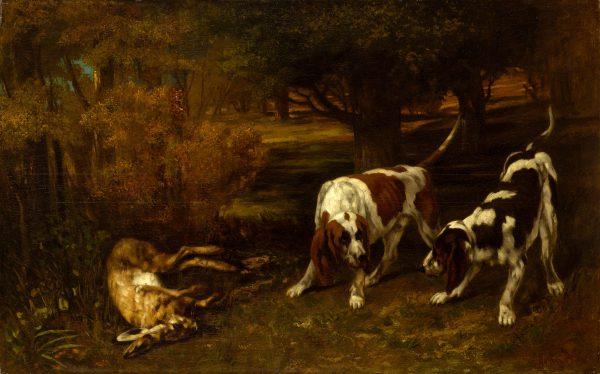 Những chú chó săn