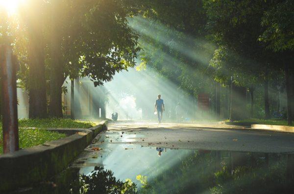 9 mẩu chuyện đáng suy ngẫm: Trên đường đời, mỗi người đều có sự lựa chọn của riêng mình